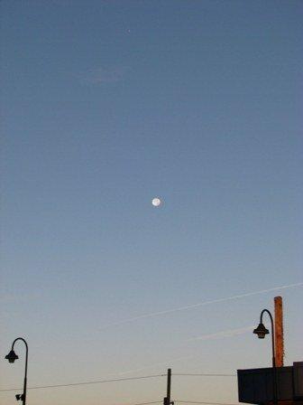 trăng buổi sáng 1