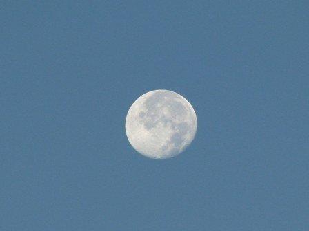 trăng buổi sáng 3
