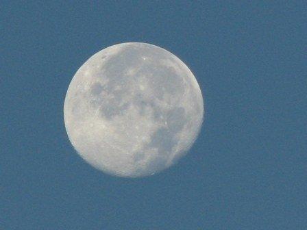 trăng buổi sáng 4