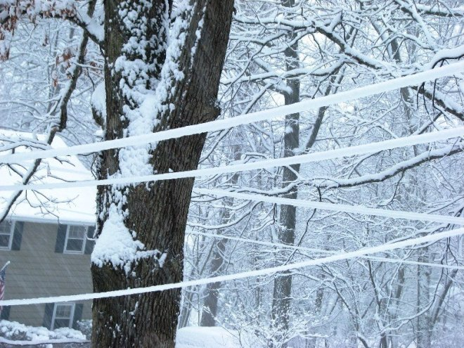 tuyết đóng trên dây điện