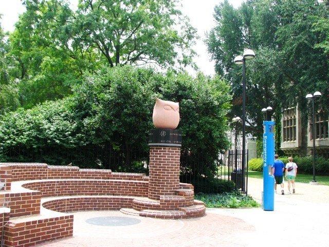 một công viên nho nhỏ của trường