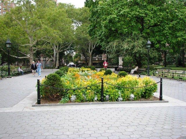 Trồng hoa trên vuông đất hiếm