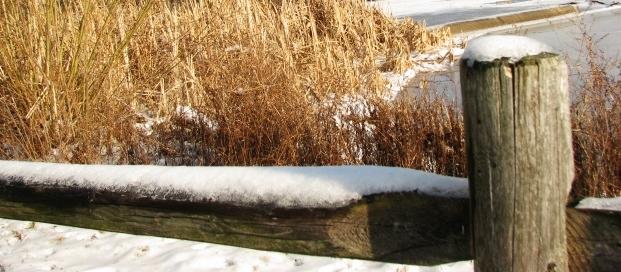 góc hồ Watchung