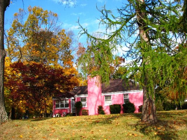 căn nhà màu tím