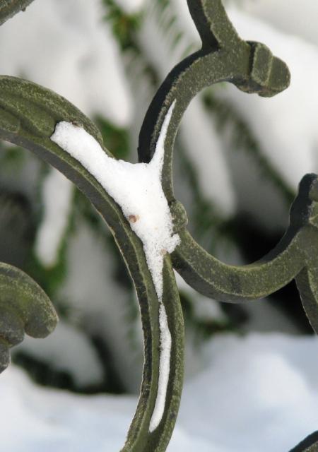 vết tuyết