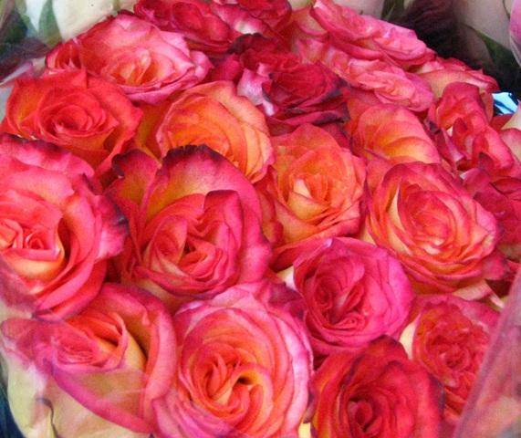 bó hồng