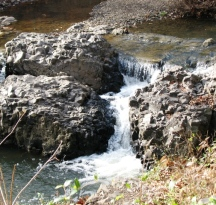 suối trong đáy rong