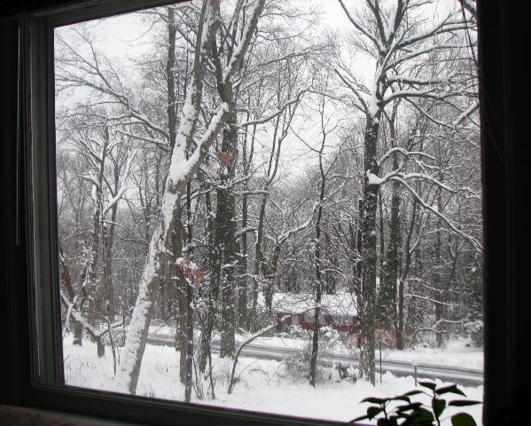 nhìn từ khung cửa sổ