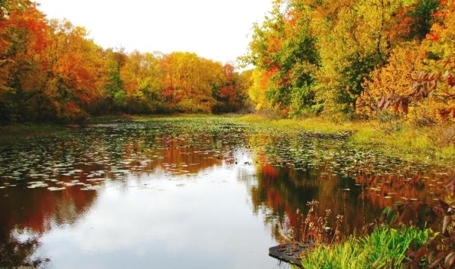 mùa thu trên hồ