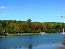 nhìn thấy mùa thu bên kia hồ
