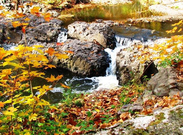Mùa thu bên suối