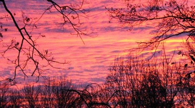 Khi mặt trời thức giấc