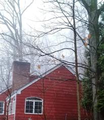 ngôi nhà đỏ trong sương mù