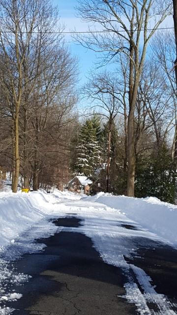 con đường trước nhà