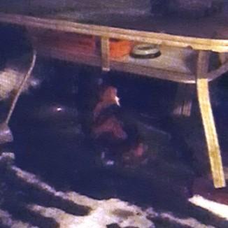 Nora dưới gầm bàn