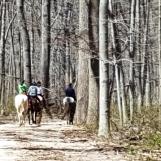 Vì gần trại nuôi ngựa nên tôi thường gặp người cỡi ngựa. Họ đi đủng đỉnh thung dung mà tôi cố mãi không bắt kịp.