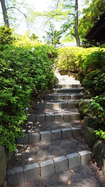 bậc thang