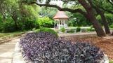 Ở ngay đầu vào vườn trà Nhật có một nhà giống như trạm canh cửa. Không biết nó hình vuông hay chữ nhật.