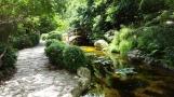 Cái cầu nhỏ này được gọi là Togetsu-kyo có nghĩa là cầu thưởng trăng, nói cho văn vẻ thì là thưởng nguyệt kiều hay vọng nguyệt kiều. Tương truyền rằng người đi trên cầu sẽ nhìn thấy bóng trăng dưới nước đi theo mình cho đến khi qua cầu.