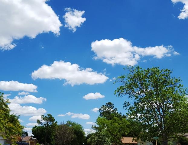 mây trắng Houston