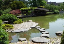stepping stones lối đi đá