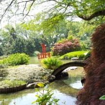 vọng nguyệt kiều nhìn về hướng torii