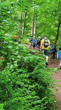 Gặp toán hướng đạo sinh đi rừng, khuất sau đường quành