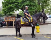 cảnh sát tuần tra thành phố