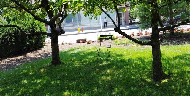 một chỗ ngồi dưới bóng cây
