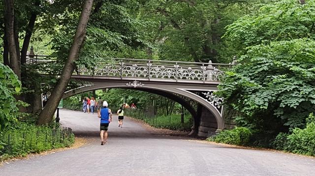 cầu thứ 24