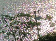 nhìn từ cửa sổ xuống dòng sông trong nắng buổi sáng