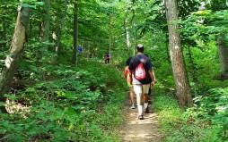 Gặp một đoàn mấy chục người đi hiking. Họ có vẻ như là bạn bè hay là người trong gia đình với nhau
