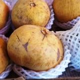 Trái giống như trái bòn bon nhưng rất to, cỡ quả lê Đại Hàn