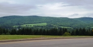 Nhìn qua bên kia sườn đèo đồng cỏ phía sau con đường ngoằn ngèo có rặng thông viền theo con đường.