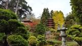 Một góc trong vườn Nhật Bản ở trong Golden Gate Park San Francisco