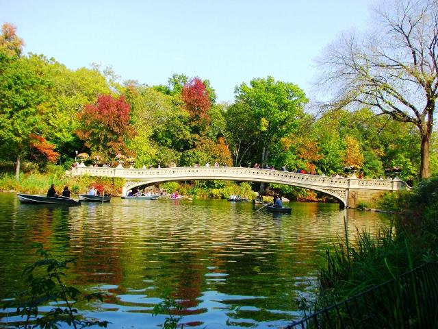 bow-bridge-trong-central-park