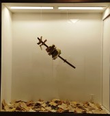 """Ở trong building Gateway, có một phòng triển lãm tranh, điêu khắc,. . . Cứ vài tuần là thay đổi tác phẩm của nghệ sĩ khác. Tôi đi ngang vào lúc đang tuần lễ chống kiểm duyệt. Chủ đề là phá hủy tác phẩm như đốt sách. Ở đây tác giả đã đâm sách bằng cây gươm. Nhìn hình dáng gươm tôi đoán của samurai. Khi tôi đang xem thì có một phụ nữ Hispanic dẫn đứa con đi ngang. Nàng còn trẻ, nhưng cũng thấp bé cỡ tôi. Nàng nhìn tôi, nói. """"Tôi không hiểu được, người ta muốn nói gì?"""" Xong nàng bỏ đi, dắt theo đứa bé trai đang chạy nhảy lung tung."""