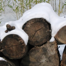 Đống gỗ trước nhà bị tuyết phủ