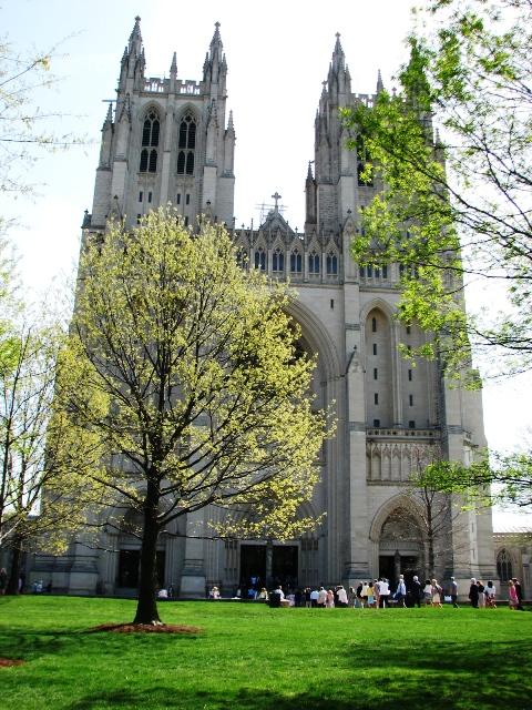 đại giáo đường ở D. C.