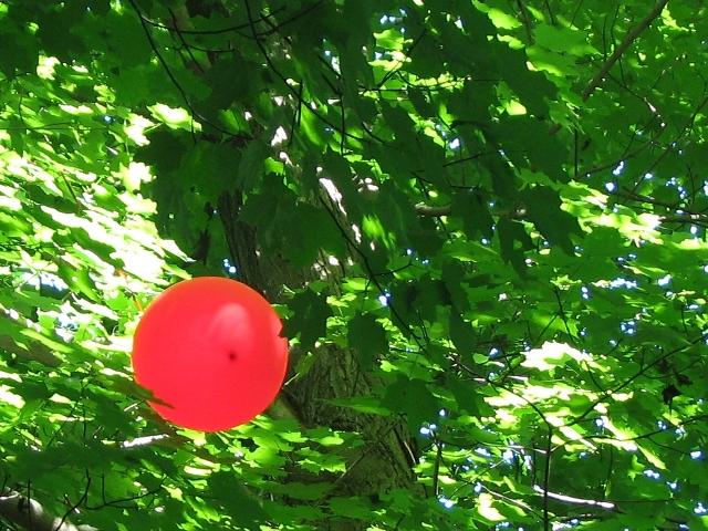 quả bóng đỏ