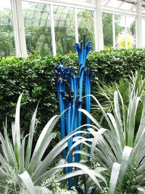 những đóa hoa thủy tinh xanh dương
