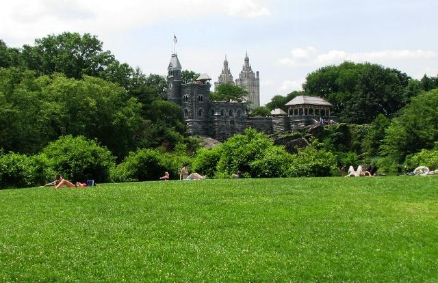 sân cỏ lâu đài người tắm nắng