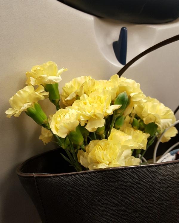 chùm hoa trong giỏ