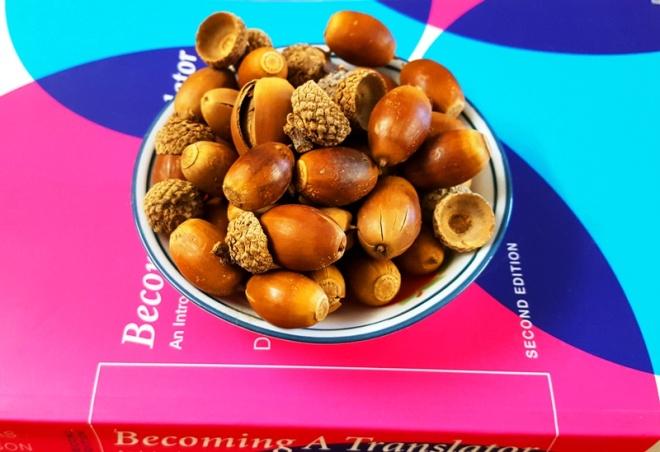 hạt sồi