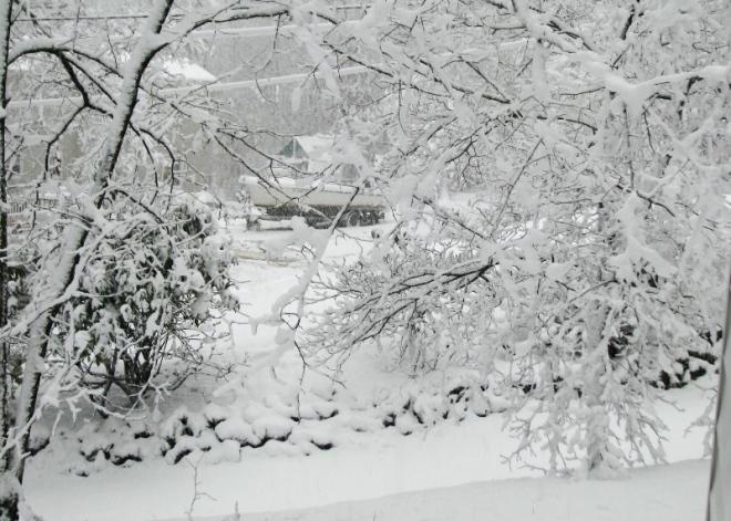 Trong cơn bão tuyết