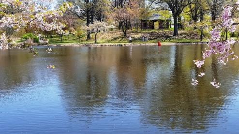 người áo đỏ bên kia hồ