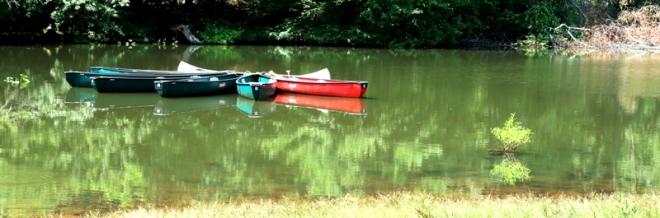 họp bạn giữa hồ