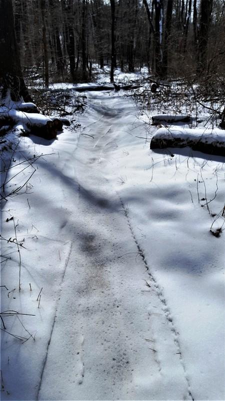 đường mòn tuyết phủ